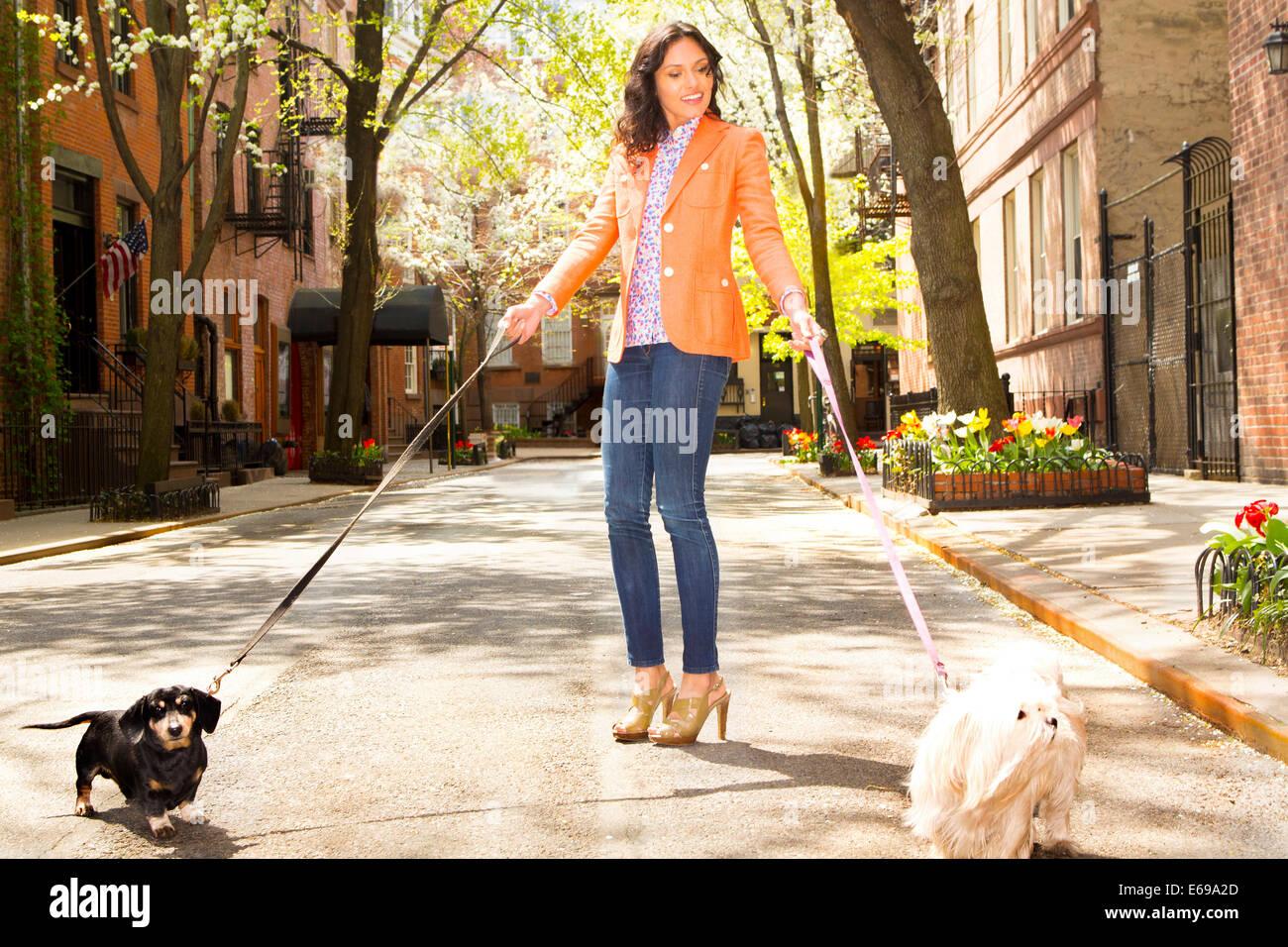 Razza mista donna cani a piedi sulla strada di città Foto Stock