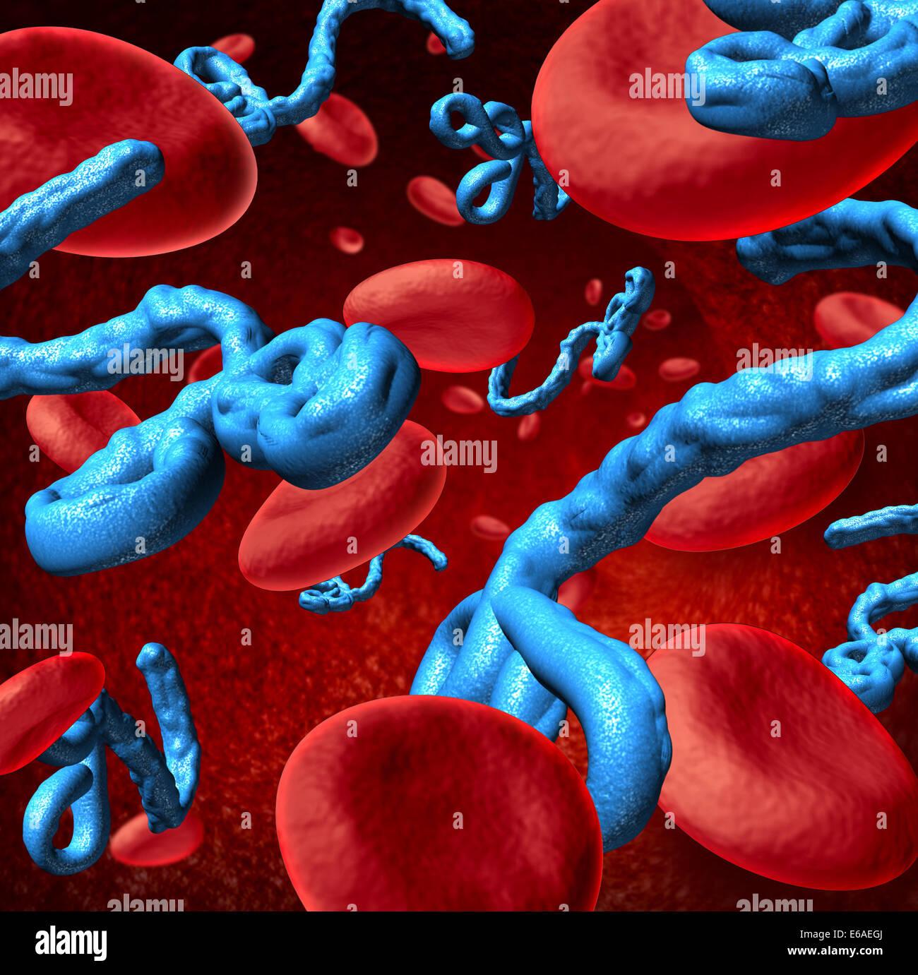 Ebola virus nel corpo umano concetto medico come tridimensionale microbi con le cellule del sangue come un simbolo Immagini Stock