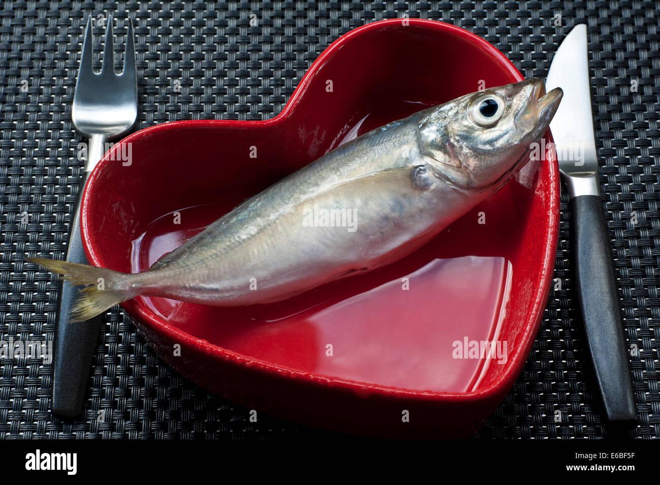 Concetto mangiare sano con pesce fresco Tilapia in rosso a forma di cuore il piatto con il coltello e la forchetta Immagini Stock