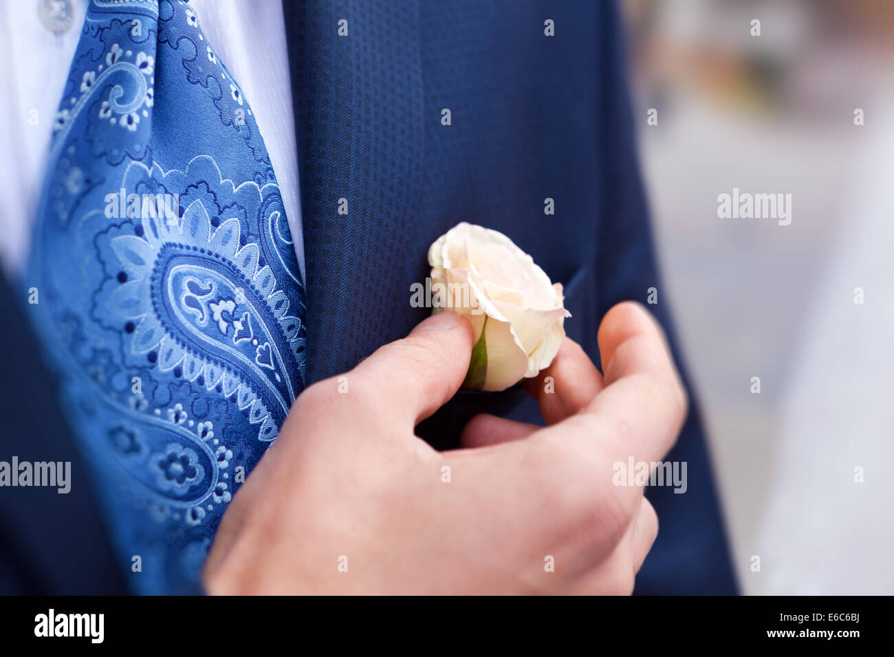 Primo piano dello sposo correggendo rose in asola - shallow dof Immagini Stock