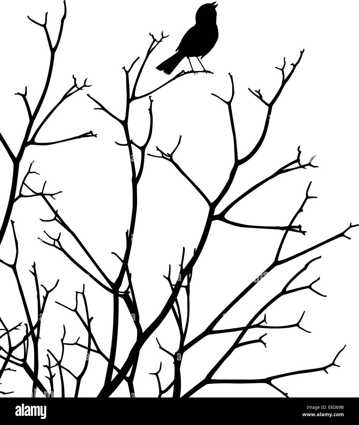 Vettore modificabile silhouette di un uccello canto presso la sommità di un albero nudo Immagini Stock
