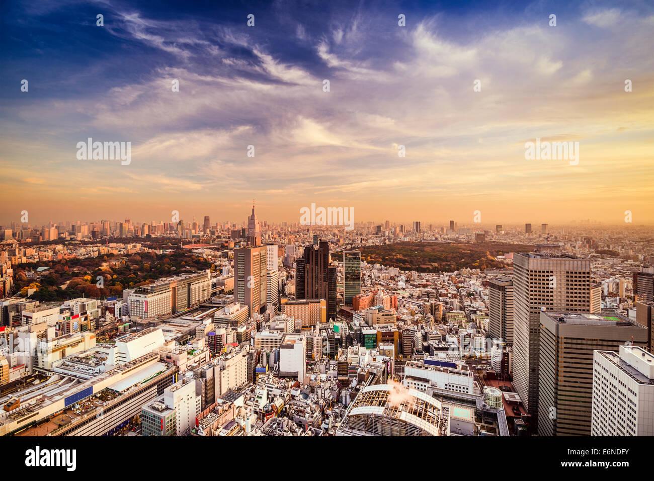 Tokyo, Giappone skyline della città al quartiere di Shinjuku. Foto Stock