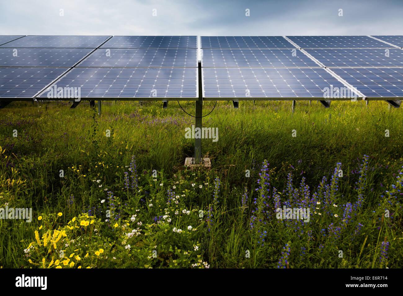 Impianto di alimentazione utilizzando fonti di energia solare Immagini Stock