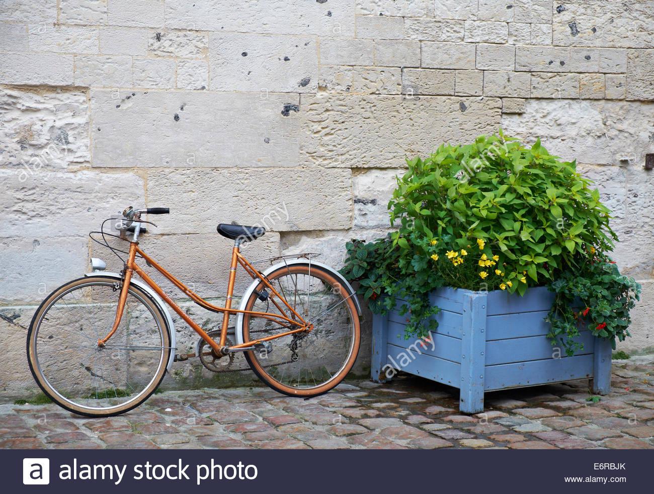 Vecchia Donna Arancione Donna Bike Jacques Anquetil Marca