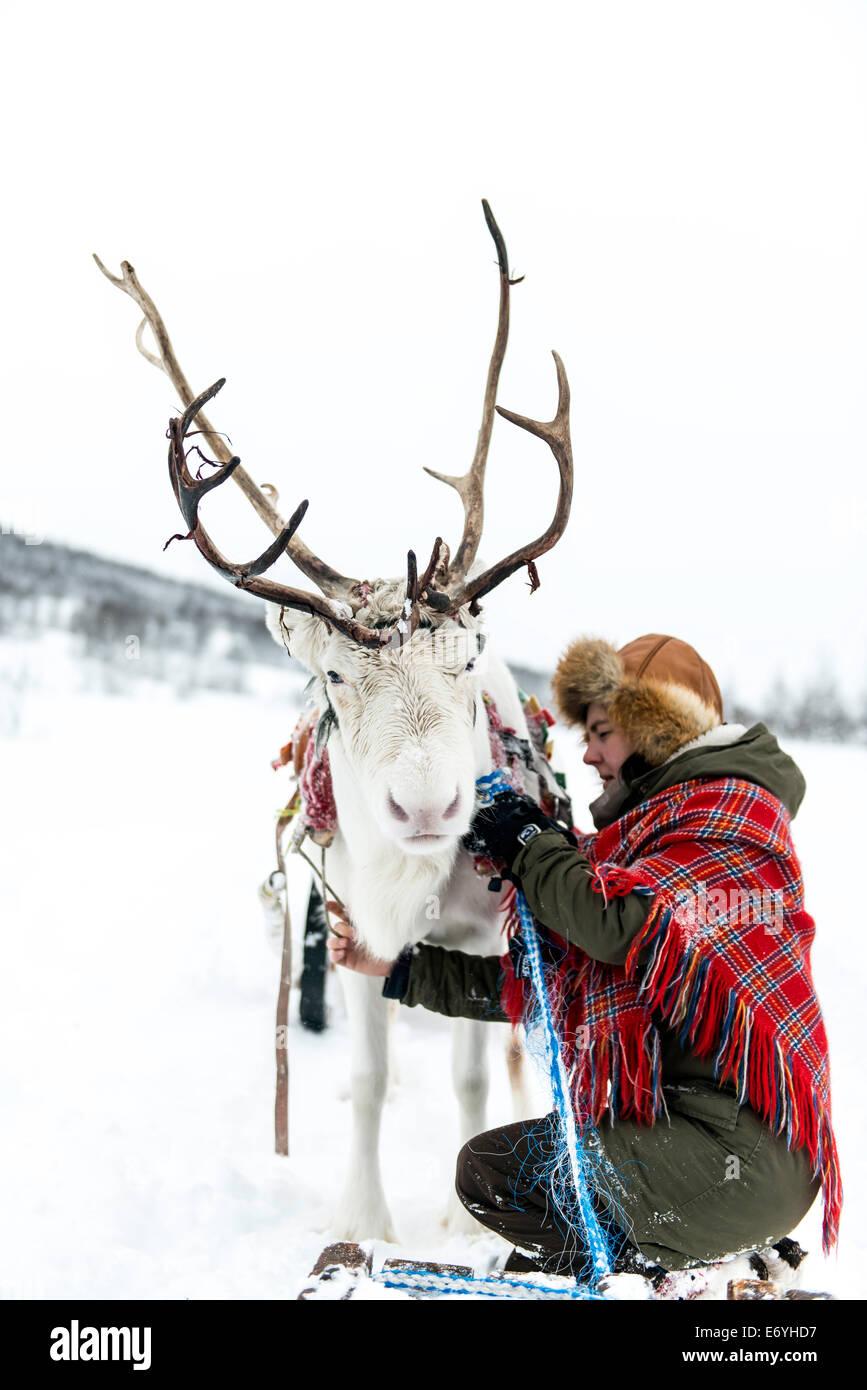 La renna herder a Camp Tamoc, Lapponia, Norvegia, Scandinavia, Europa Immagini Stock