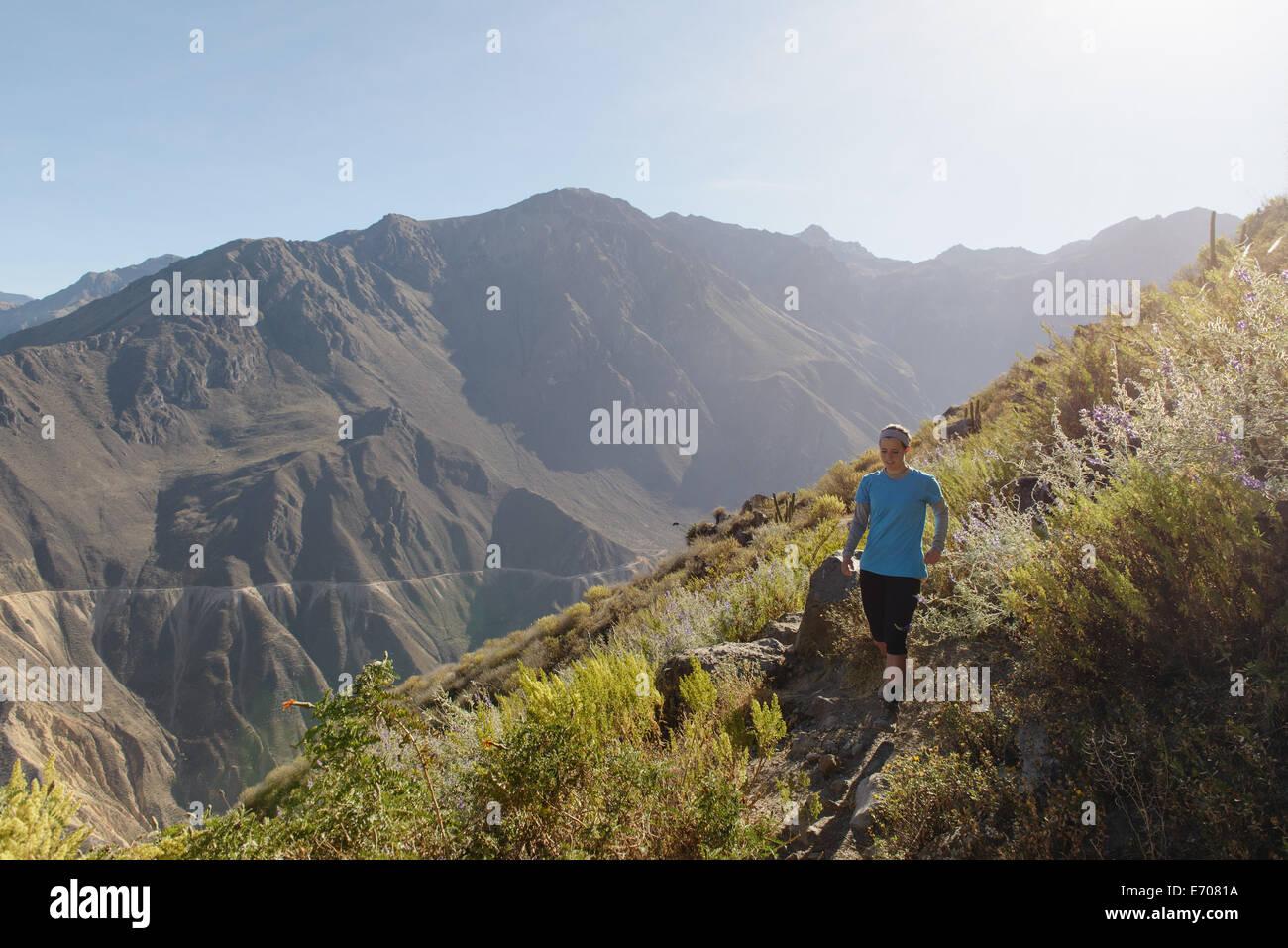 Giovane donna fare jogging nel Canyon del Colca, Cabanaconde, Perù Immagini Stock