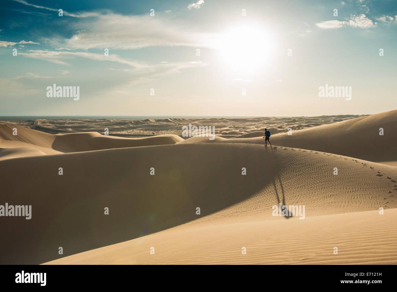 L'uomo escursionismo in Glamis dune di sabbia, CALIFORNIA, STATI UNITI D'AMERICA Foto Stock