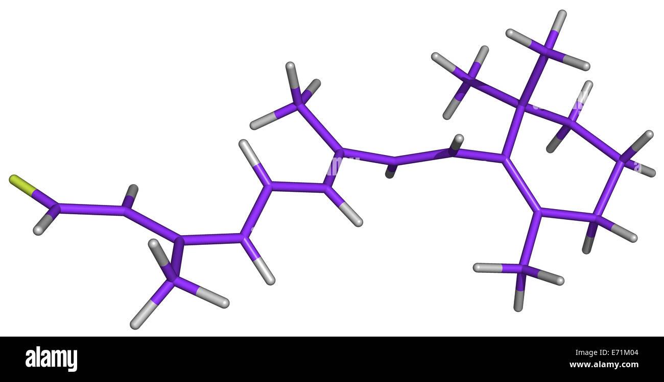 La vitamina A è necessaria per la produzione della rodopsina, il pigmento visivo utilizzato a livelli di luminosità Immagini Stock