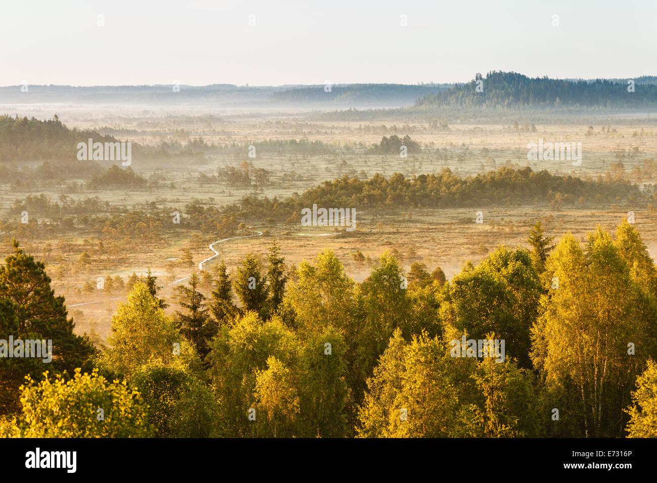 Paesaggio da sogno presso la palude Torronsuo in Finlandia su un inizio di mattina. Immagini Stock