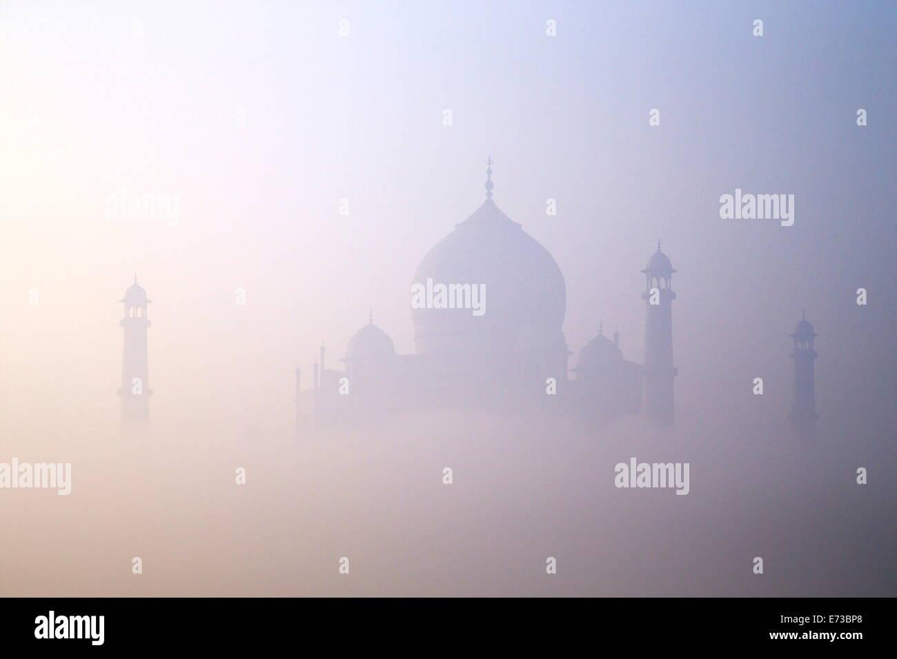 Taj Mahal all'alba, Sito Patrimonio Mondiale dell'UNESCO, Agra, Uttar Pradesh, India, Asia Immagini Stock