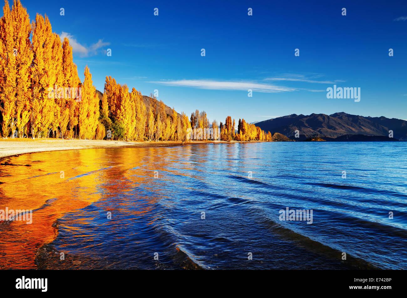Paesaggio autunnale, il lago Wanaka, Nuova Zelanda Immagini Stock