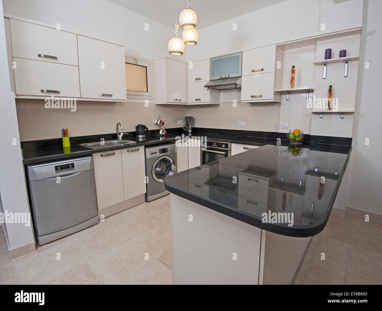 Cucina in stile americano area di appartamento di lusso che mostra