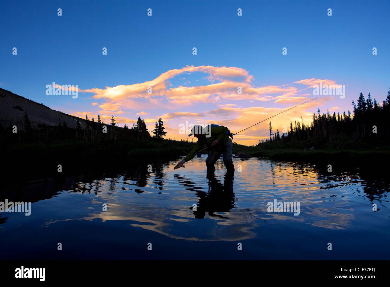 Pesca a Mosca per la trota di fiume in prima serata vicino a Boulder, Colorado, Stati Uniti d'America. Foto Stock