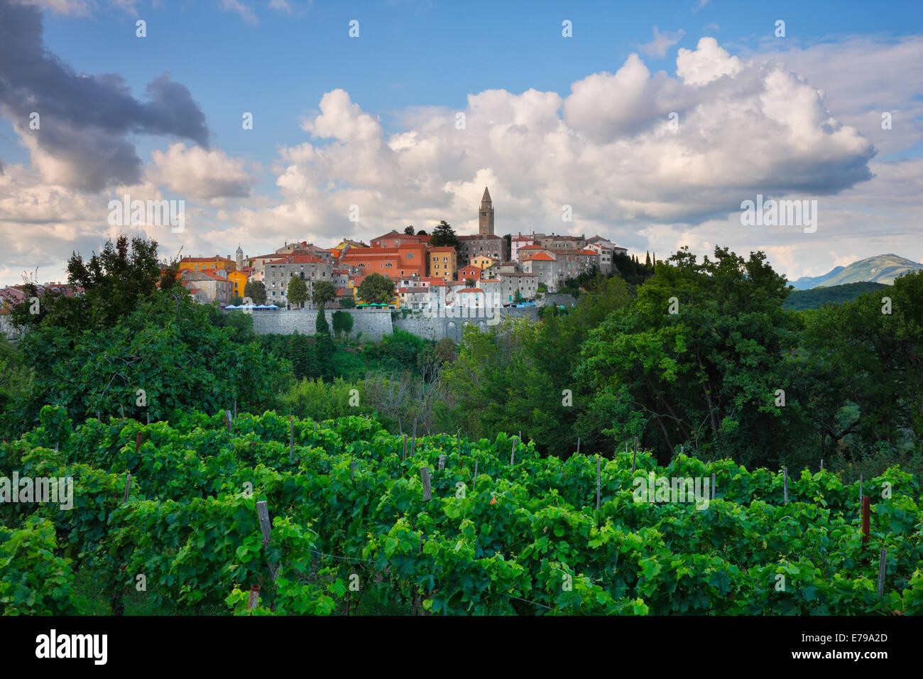 Labin città vecchia sulla collina in Istria, Croazia Immagini Stock