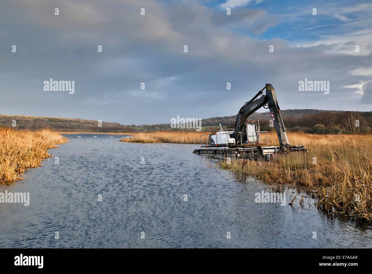 Leighton Moss; macchinari; Lancashire, Regno Unito Immagini Stock