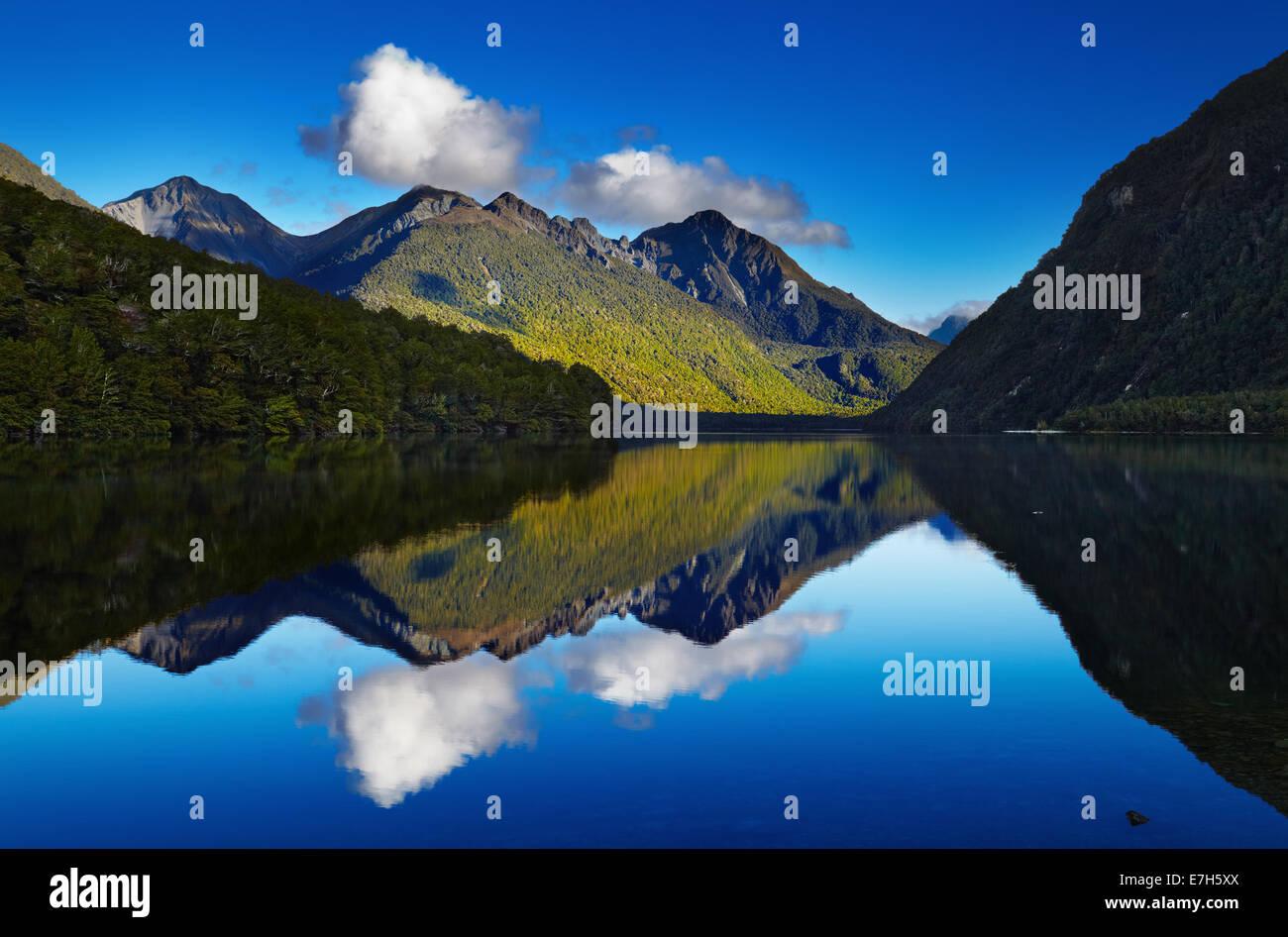 Il lago di Gunn, Fiordland, Nuova Zelanda Immagini Stock