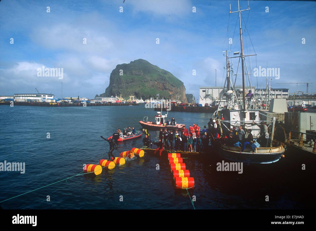 Canna jumping, concorrenza, competere, Seamens Festival, Westman Isola, Islanda, Scandinavia, scandinavo, fuori Immagini Stock