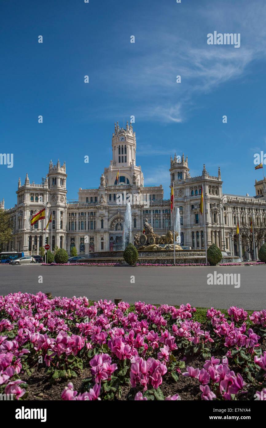 Edificio, Cibeles, Municipio di Madrid, città, Spagna, Europa, quadrato, architettura, fiori, fontana, molla, Immagini Stock