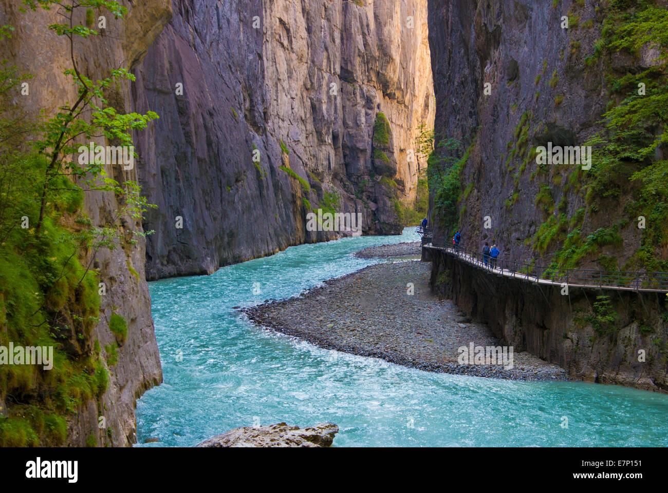 Aare, gole, canyon, Svizzera, Europa, geologia, verde natura, Parco, River, rocce, molla, turistica, viaggi, acqua Immagini Stock