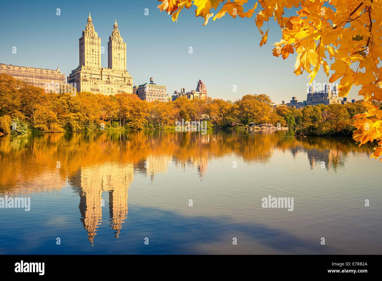 Central Park a giornata di sole Immagini Stock