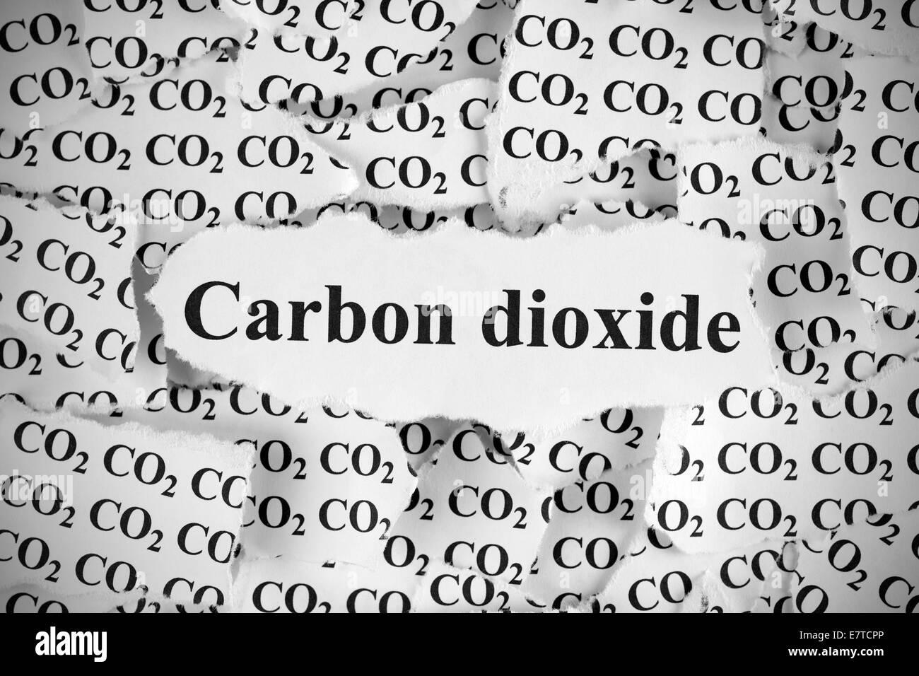 """Pezzi di carta strappati con la parola """"Biossido di carbonio"""". In bianco e nero. Close-up. Immagini Stock"""