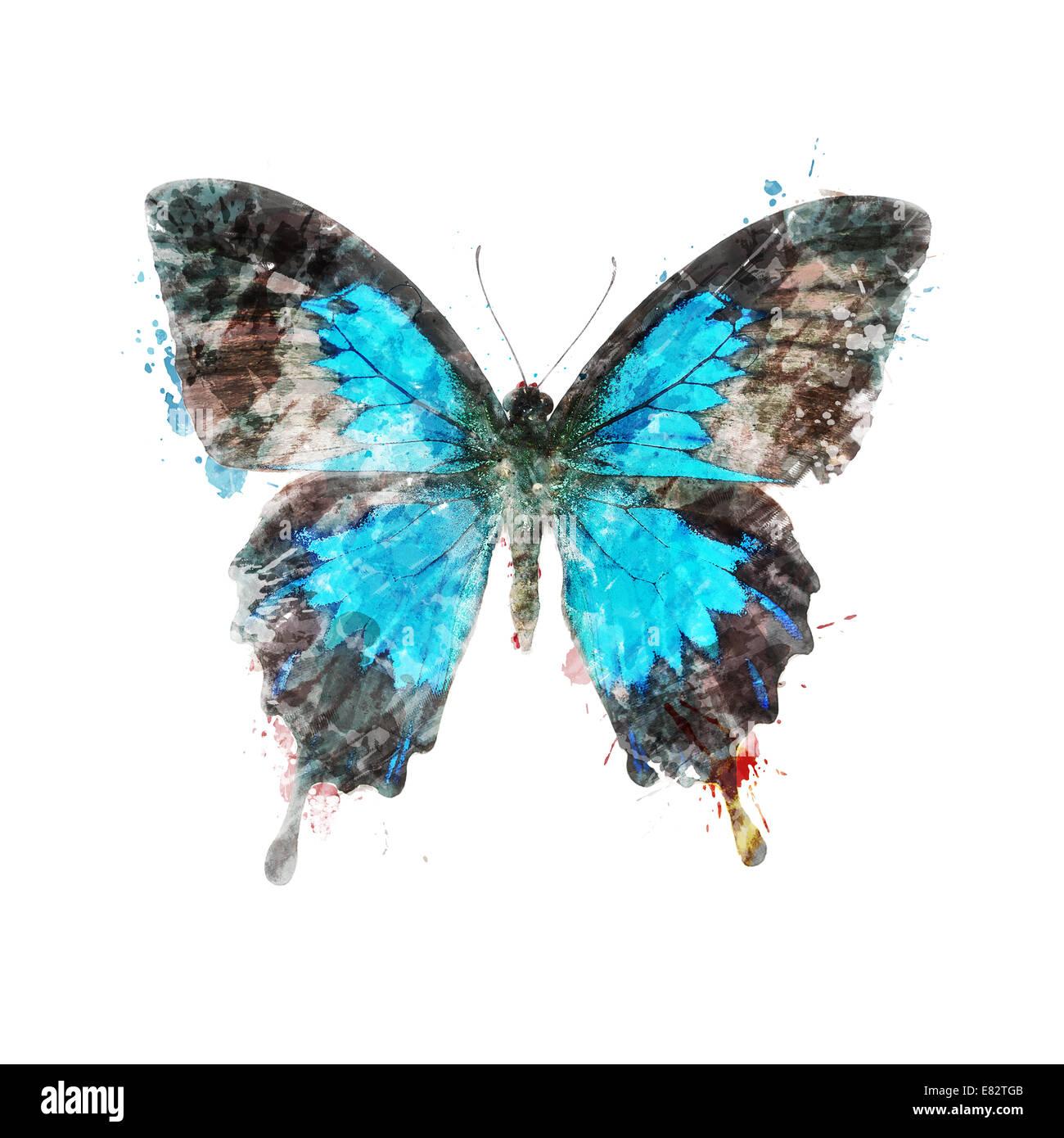 Acquerello la pittura digitale di farfalle tropicali Immagini Stock