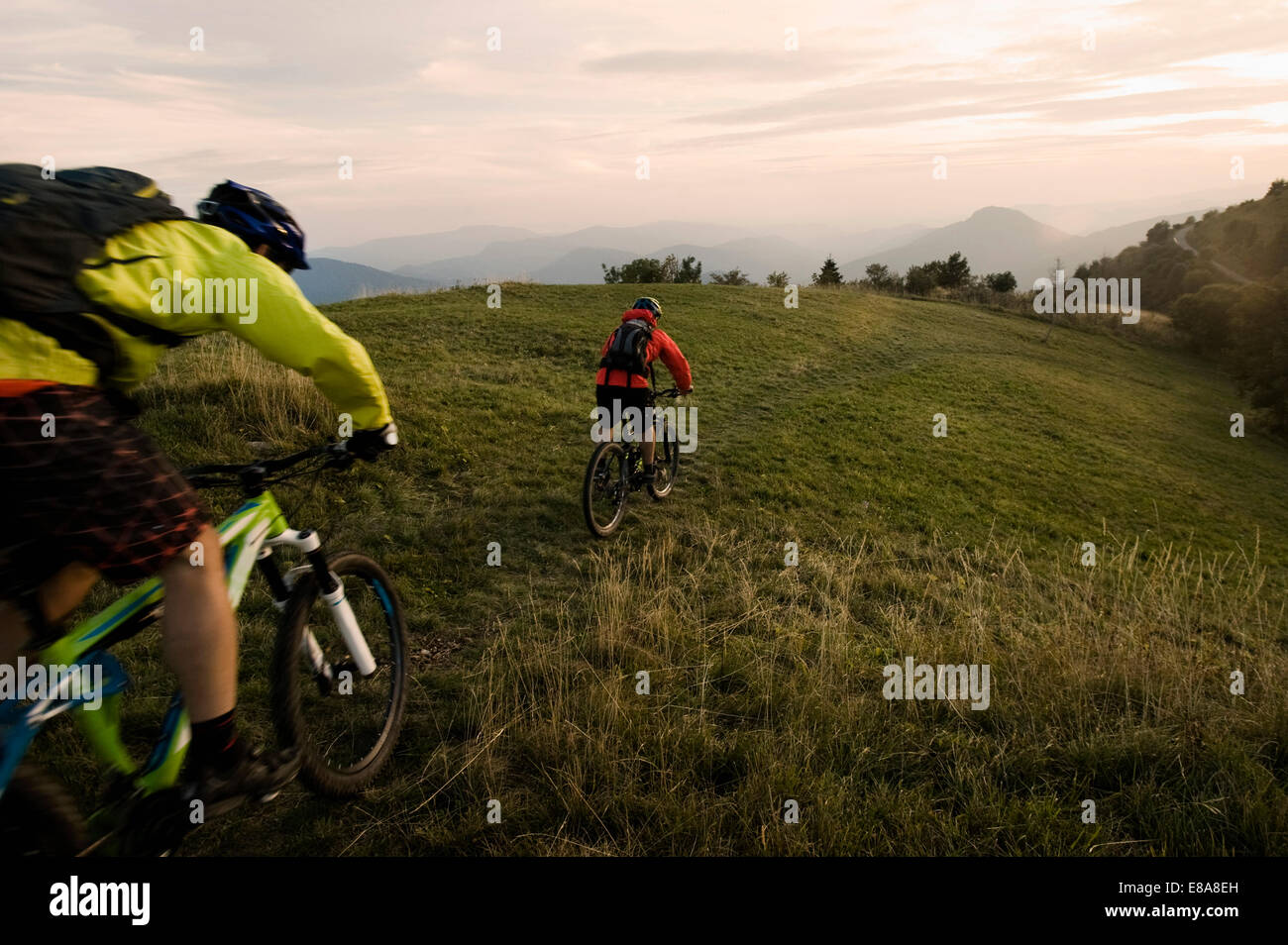 Due mountain bike sul modo Kolovrat, Istria, Slovenia Immagini Stock