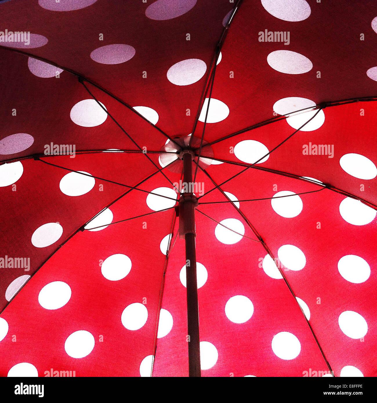 Ombrello aperto con la polka dot pattern Immagini Stock