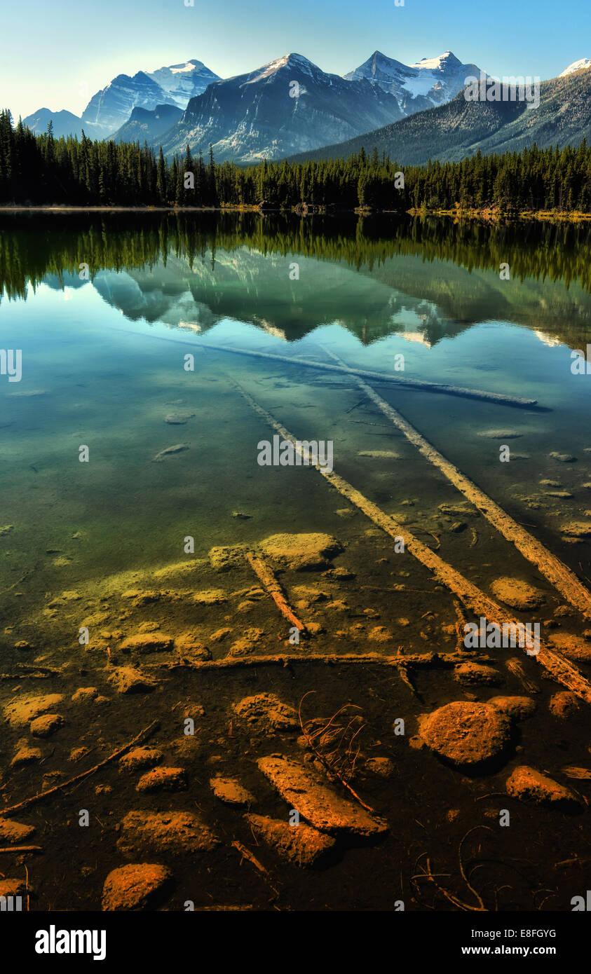 Herbert Lake, il Parco Nazionale di Banff, Alberta, Canada Immagini Stock
