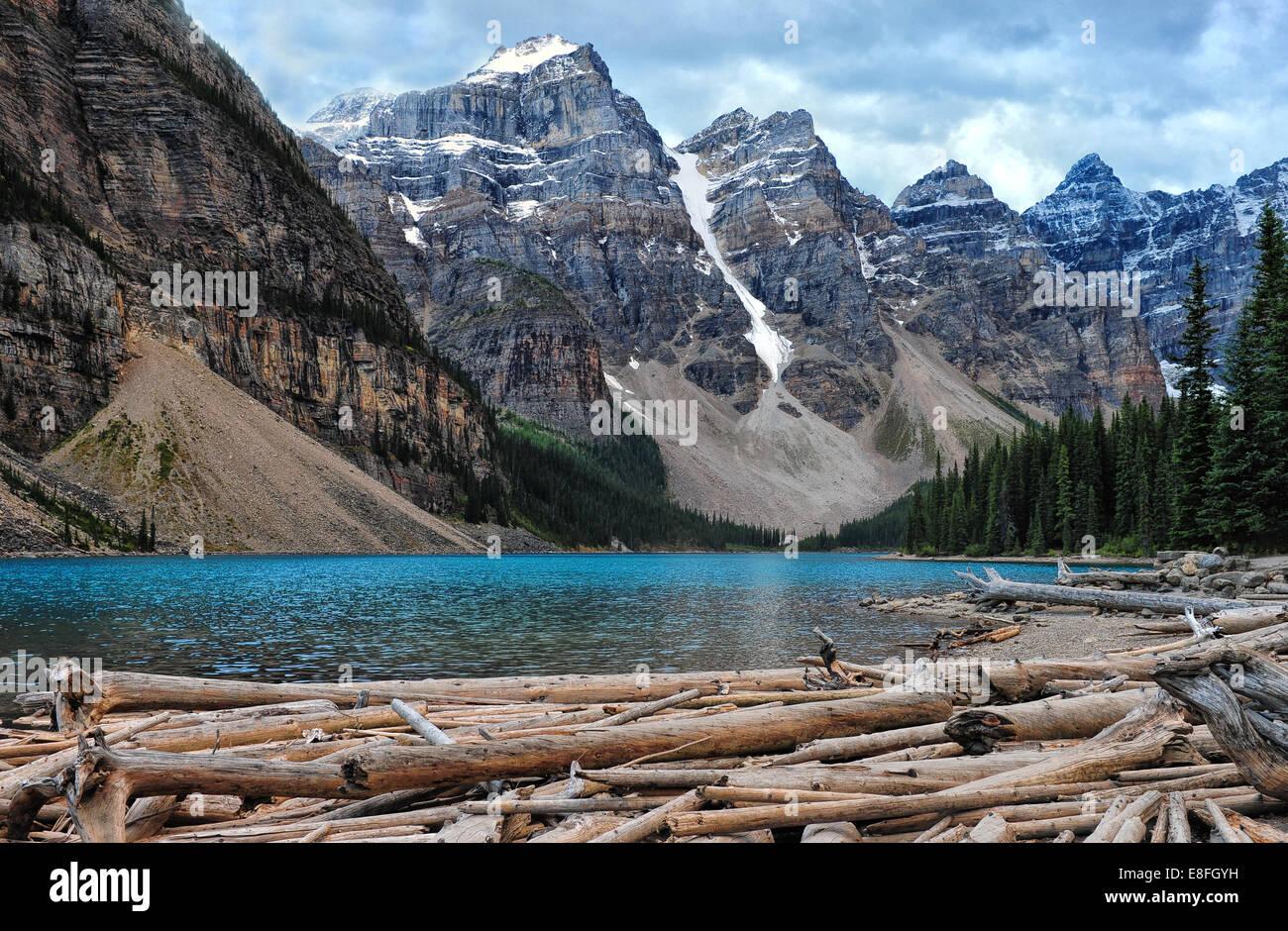 Logpile presso il Lago Moraine e il Parco Nazionale di Banff, Alberta, Canada Immagini Stock