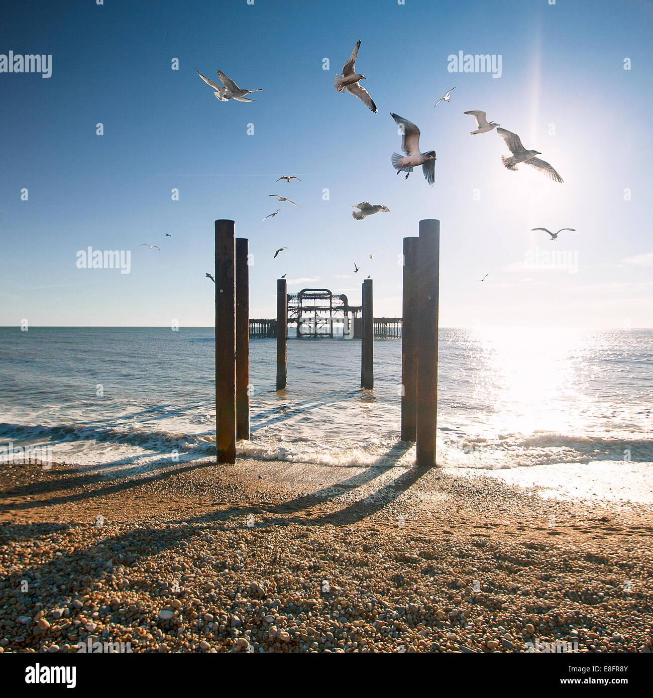 Molo Ovest di Brighton, East Sussex, England, Regno Unito Immagini Stock