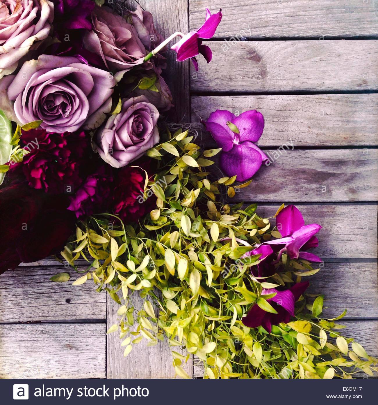 Close-up di fiori in mostra Immagini Stock