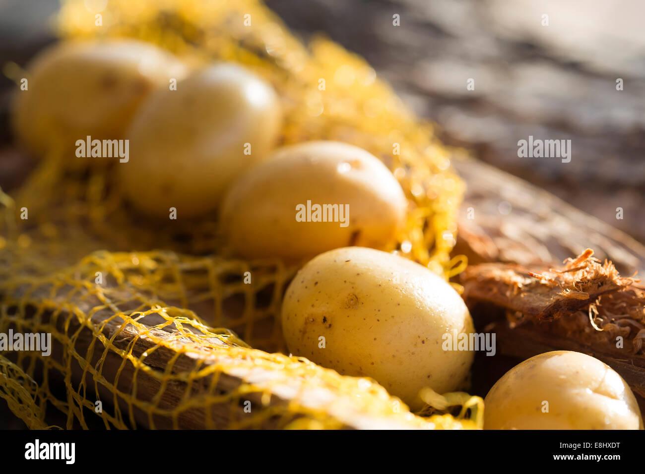 Gruppo di patate intere su legno rustico nel trasportare net. Immagini Stock