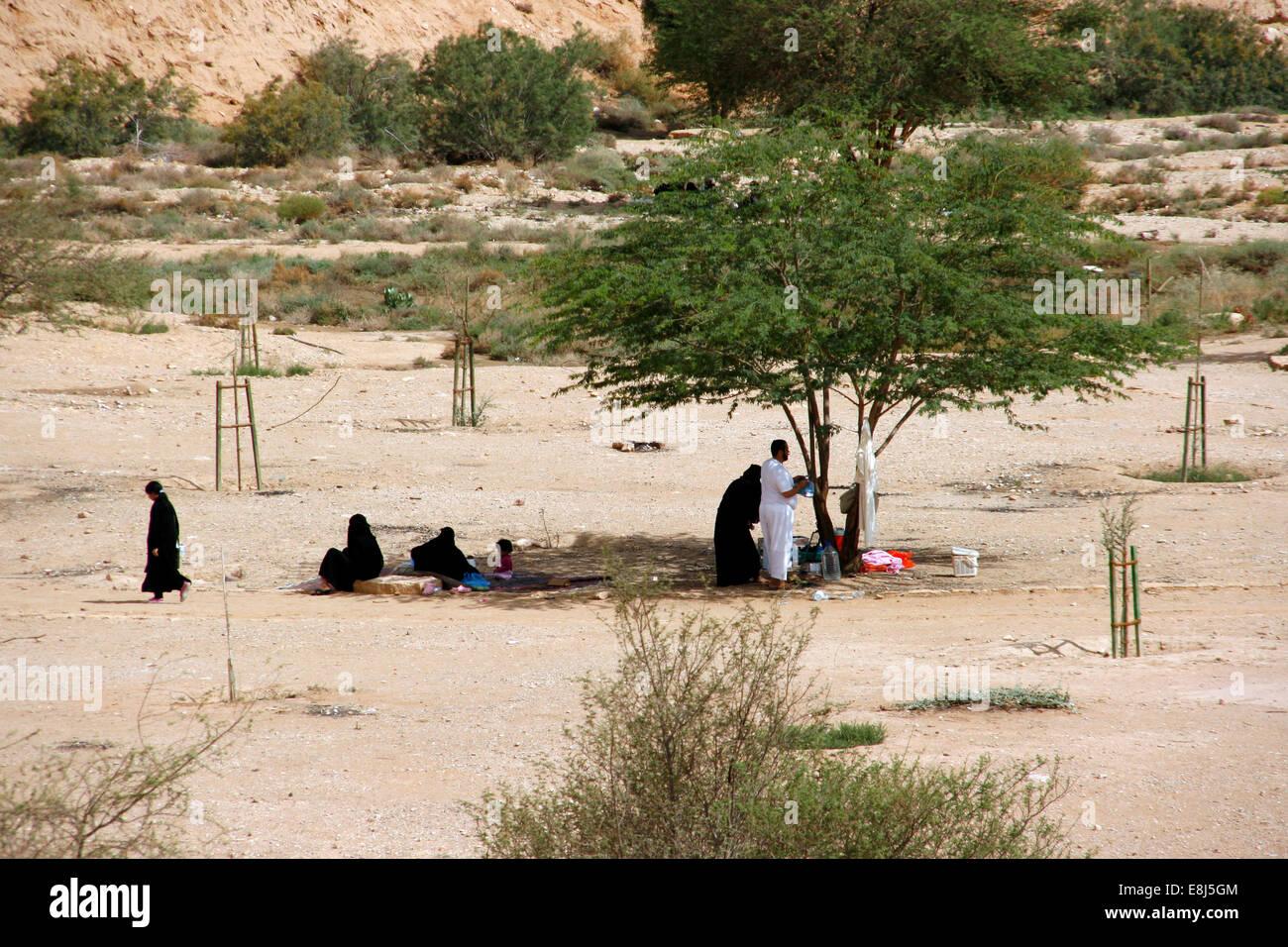 La gente del luogo avente un pic-nic sotto l'ombra degli alberi nel Wadi Hanifa, vicino a Riyadh, Arabia Saudita Immagini Stock