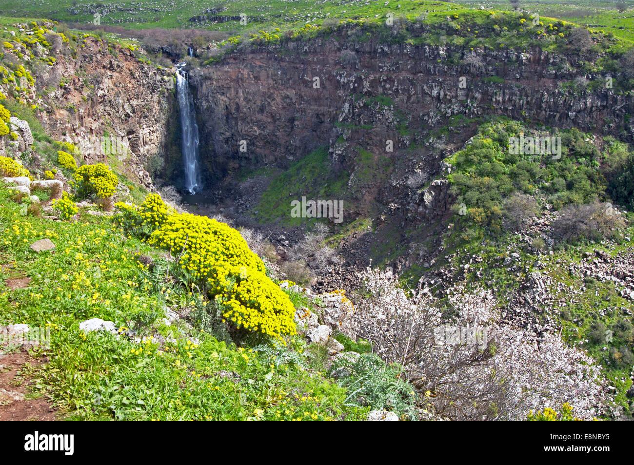 Gamla falls, Golan, Israele Immagini Stock