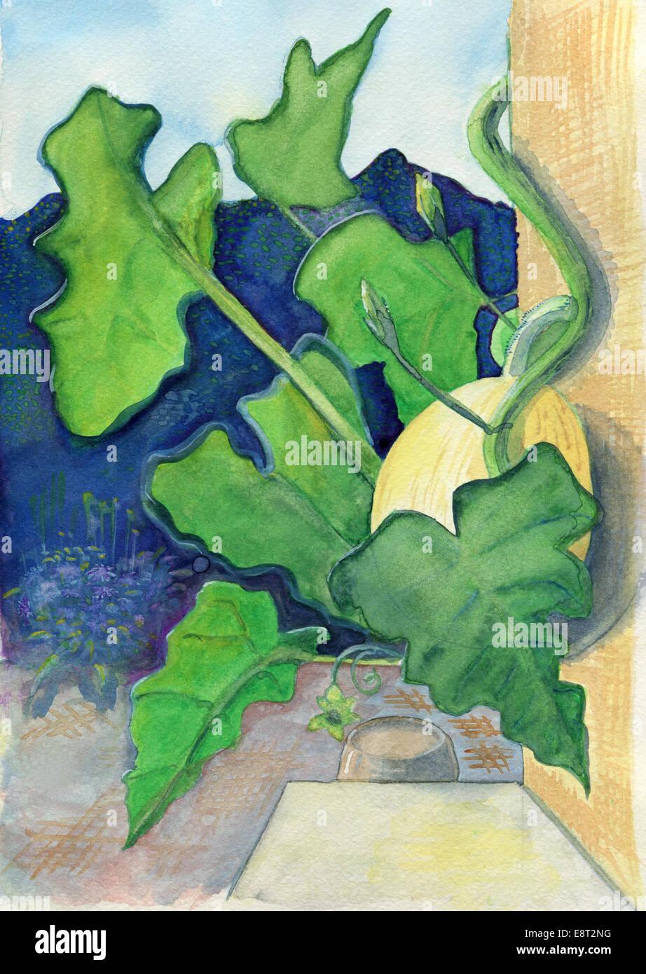 La zucca, originale acquarello e tempera pittura. Immagini Stock
