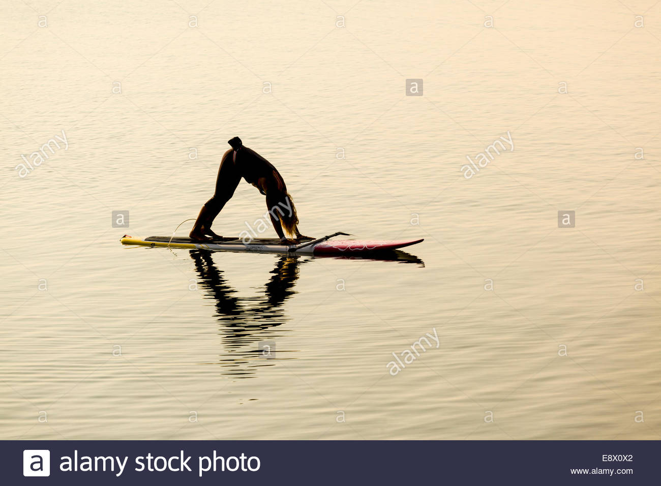 Esercizi yoga mentre equilibrata su un paddleboard al mattino sul lago Ontario in Toronto Ontario Canada. Immagini Stock