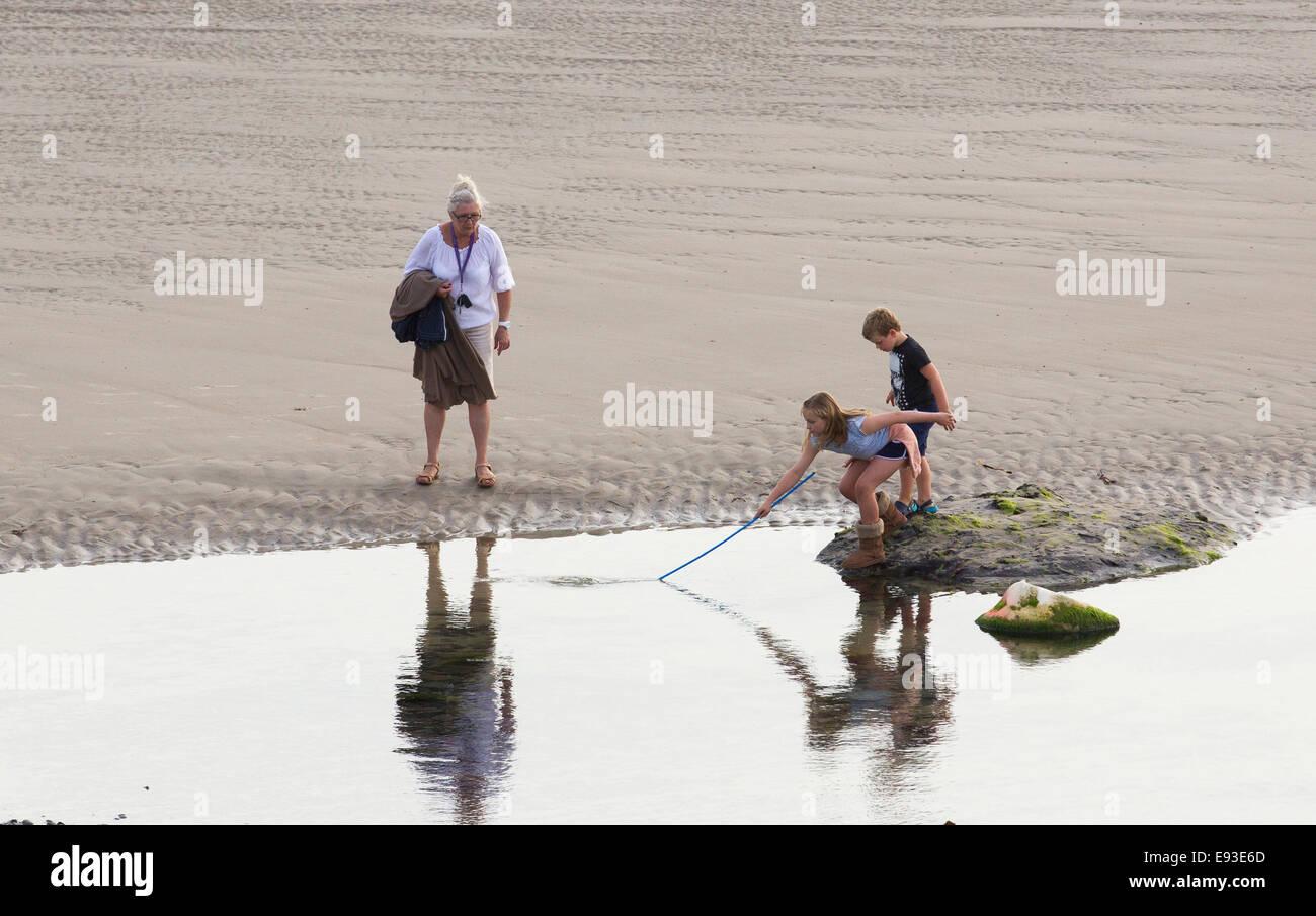 La nonna e la grand bambini ragazzo e ragazza con rete da pesca sulla spiaggia rock pool cercando di catturare pesci Immagini Stock