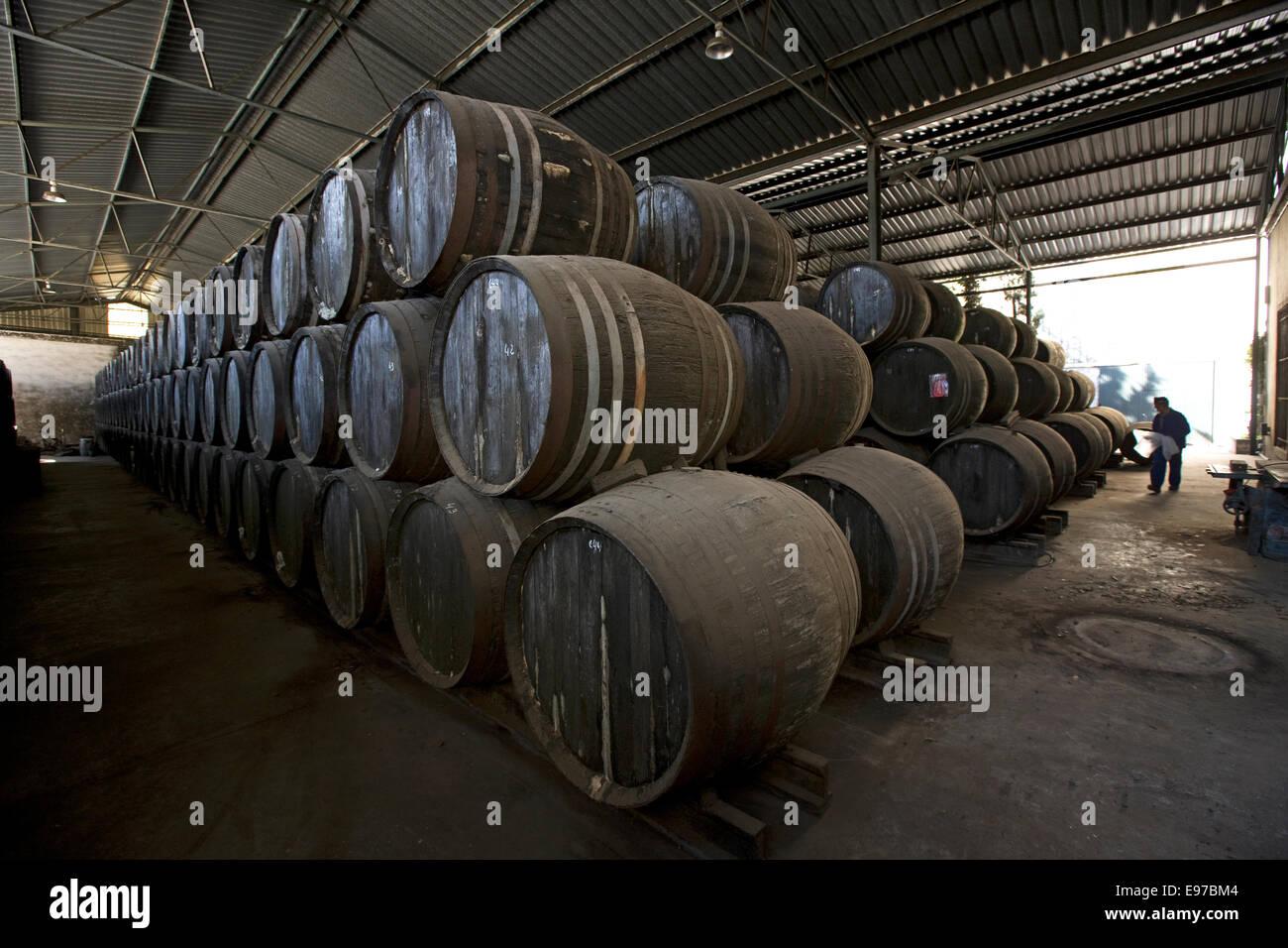 Vino di Xeres la conservazione in botti di rovere a Bodega Perez Barquero a Montilla Foto Stock