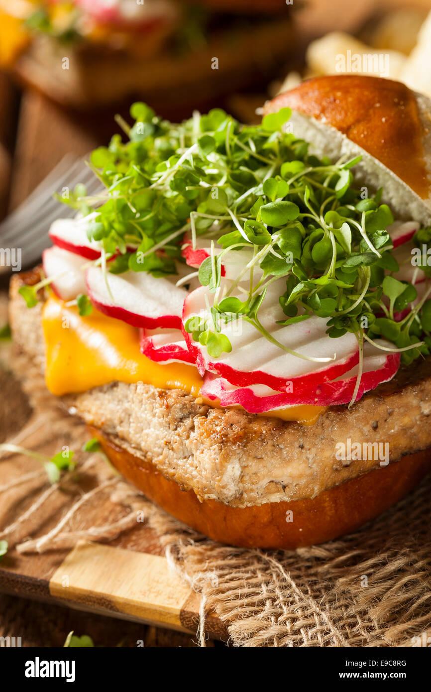 Fatti in casa a base di soia vegetariani Tofu hamburger con patatine Immagini Stock