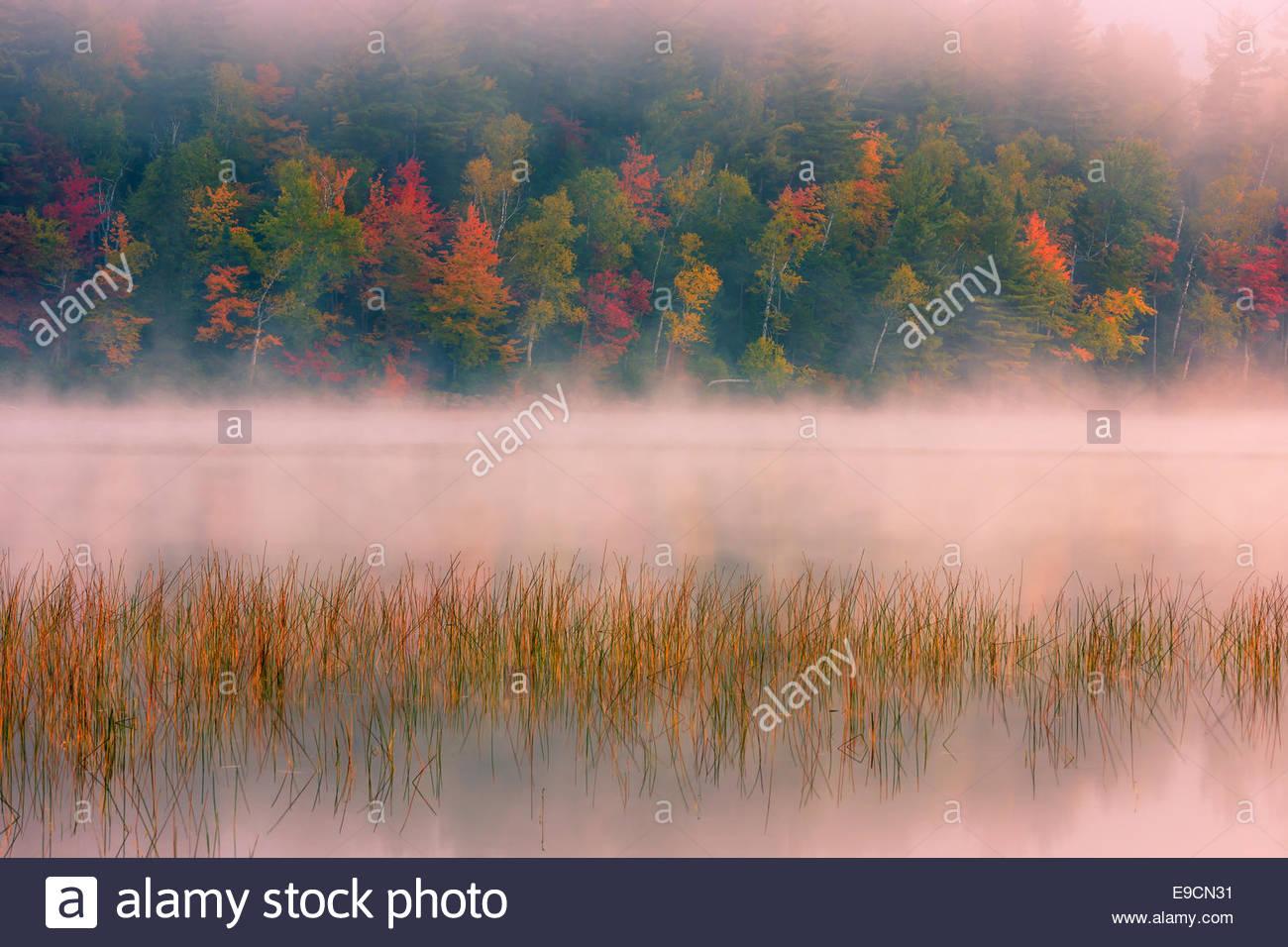 Connery Pond in Adirondacks State Park, vicino a Lake Placid nella parte settentrionale dello Stato di New York, Immagini Stock