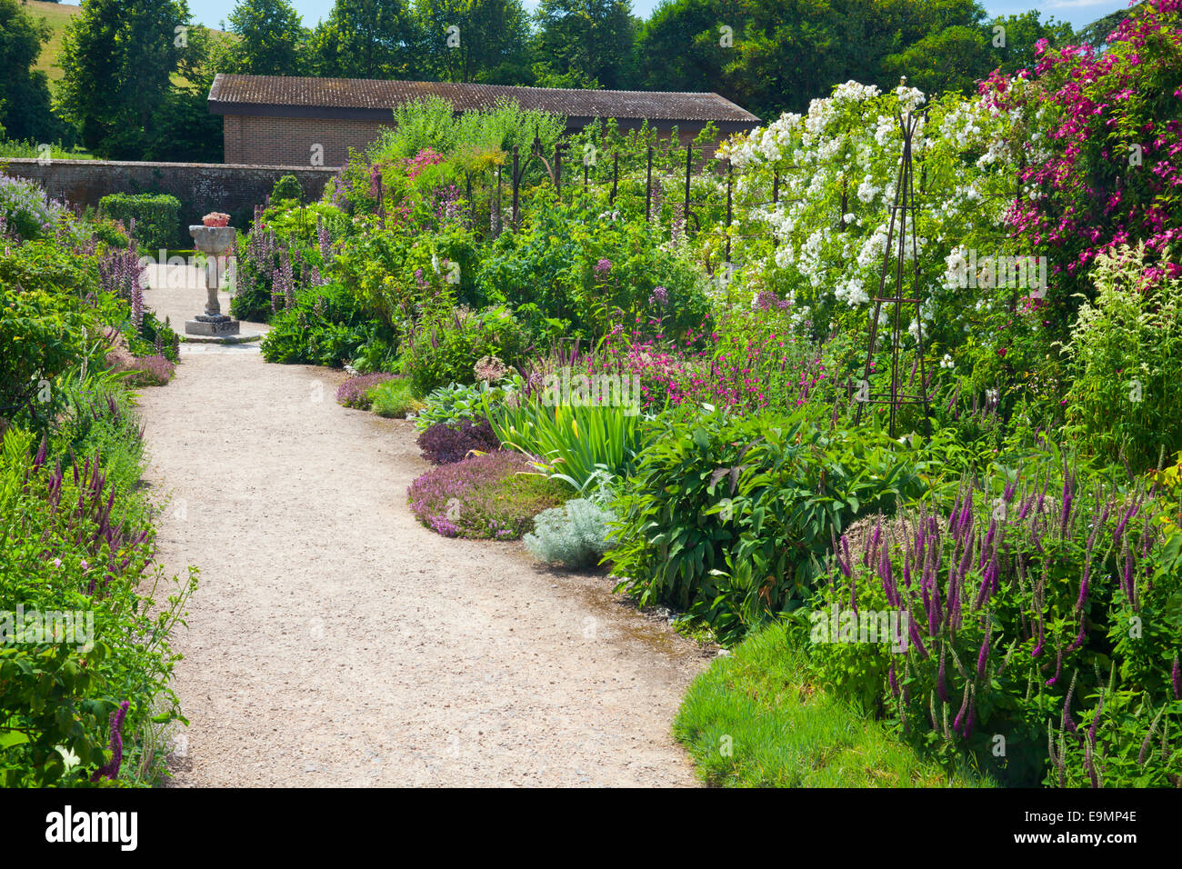 Alcuni dei colorati herbaceous borders in il giardino murato a west