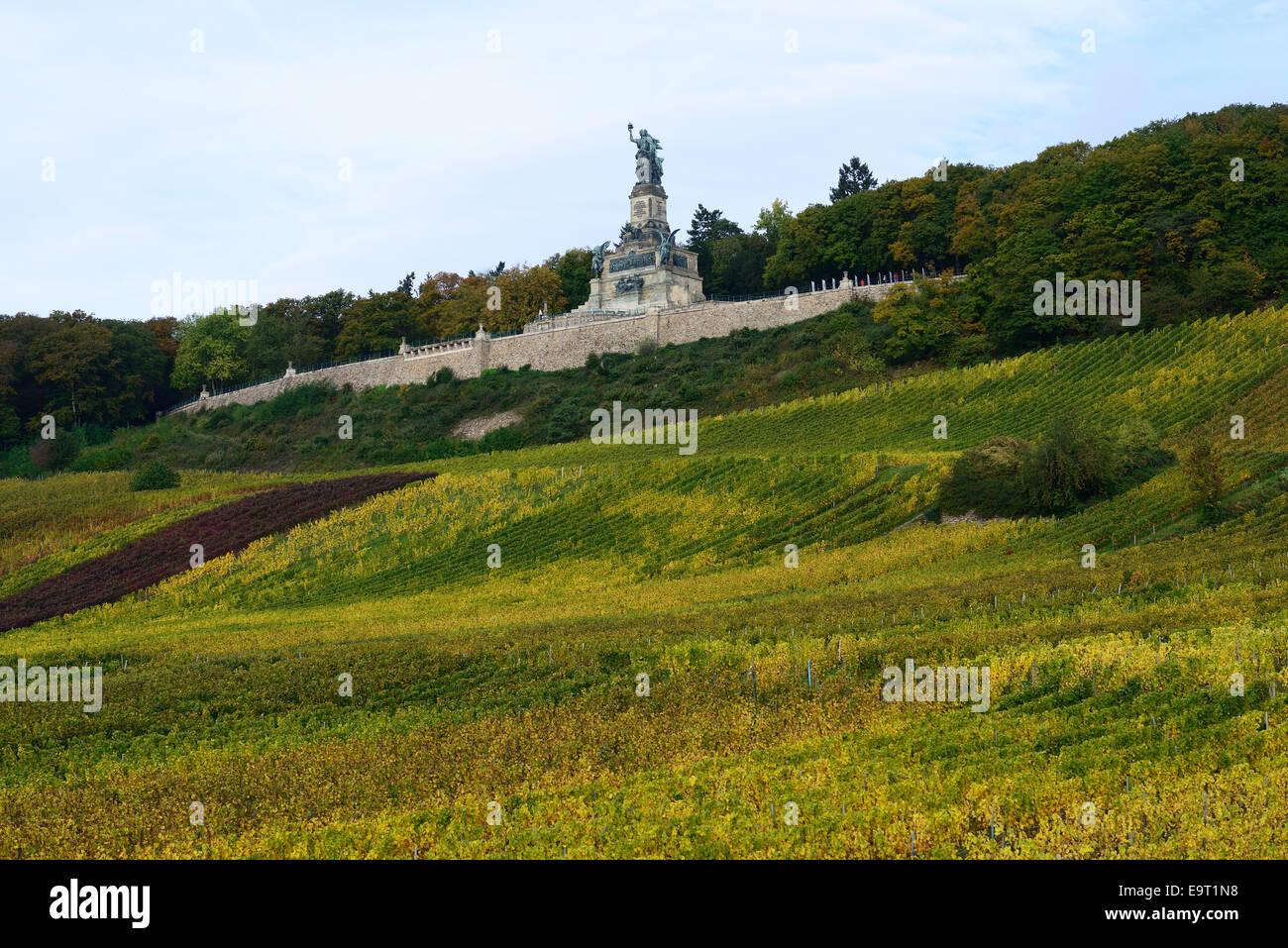 NIEDERWALDDENKMAL (Monumento Niederwald) & vigne. Parco Niederwald, Rüdesheim am Rhein, Hesse, Germania. Immagini Stock