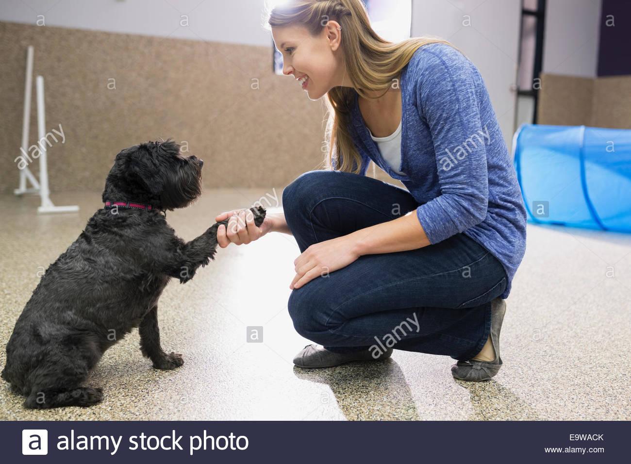 Dog trainer stringono le mani con il cane Immagini Stock