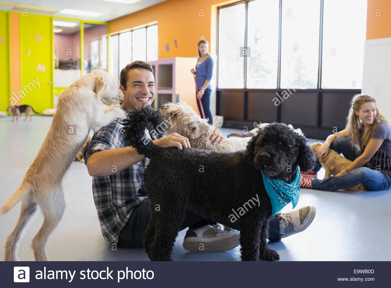 L'uomo gioca con cani di assistenza diurna del cane Immagini Stock