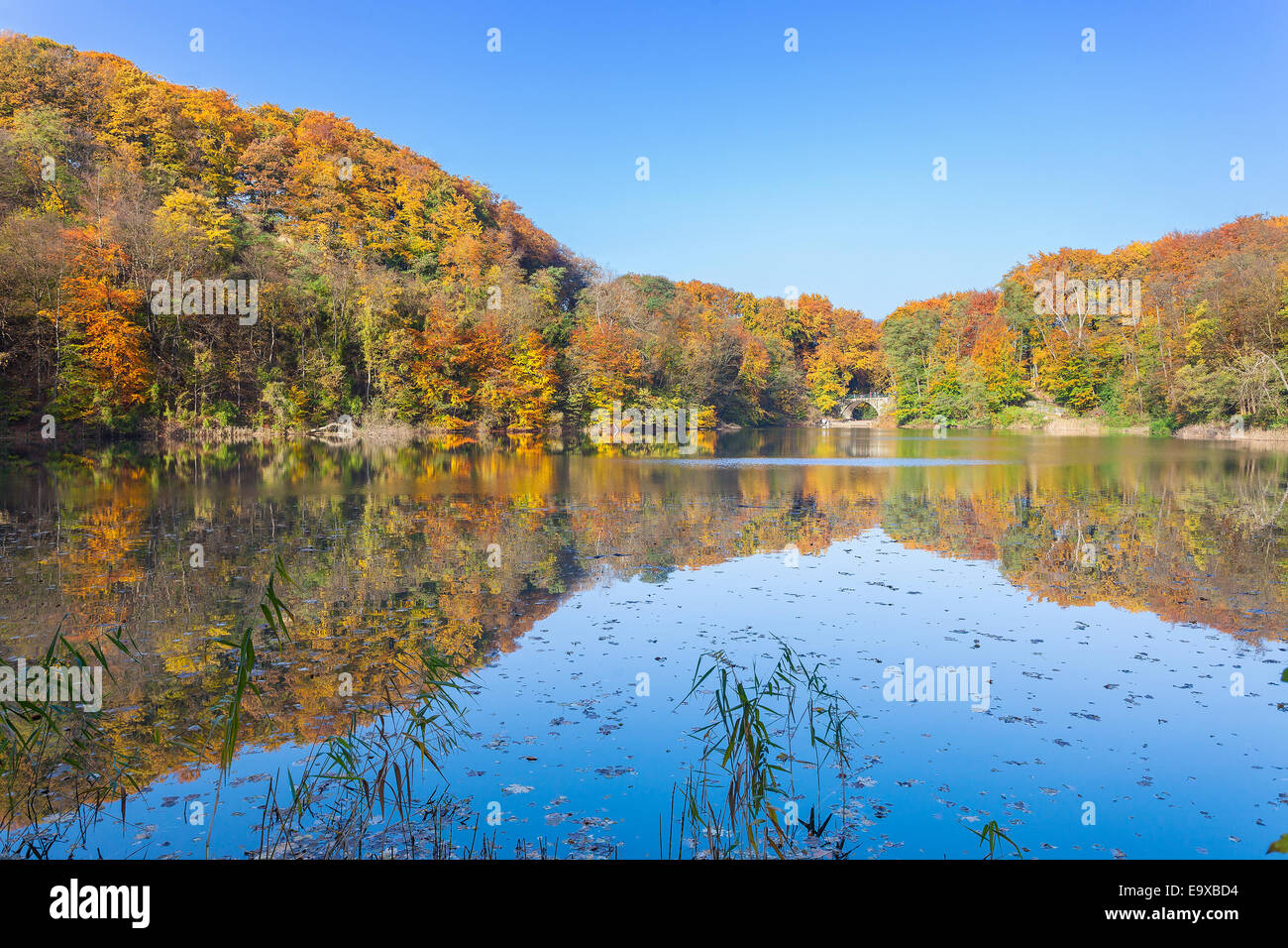 Colorato paesaggio autunnale con la riflessione in un lago. Immagini Stock
