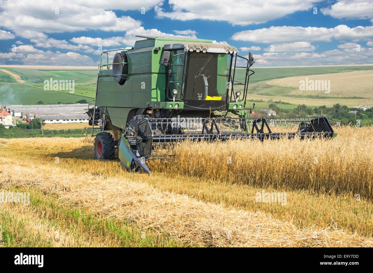 Macchina mietitrebbiatrice lavorando sul campo di grano. Immagini Stock