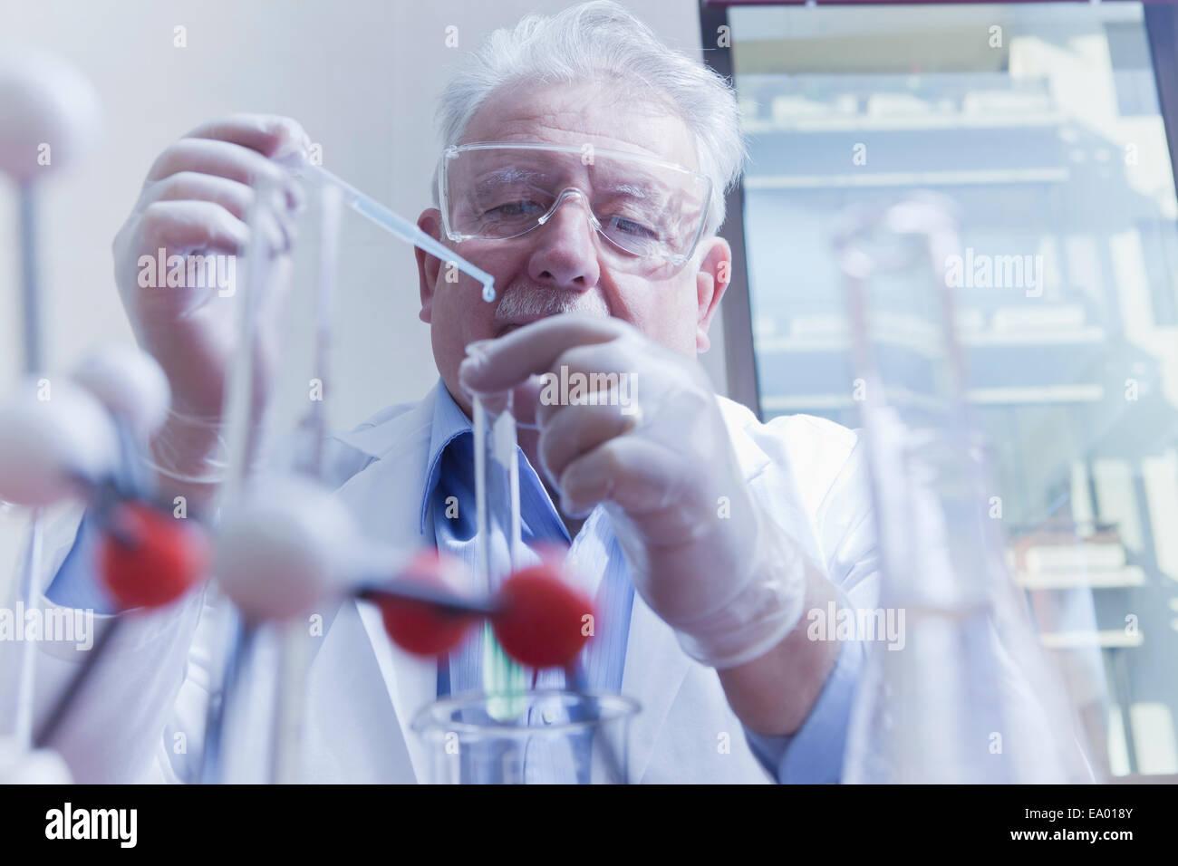 Senior Scientist lavorare in laboratorio Foto Stock