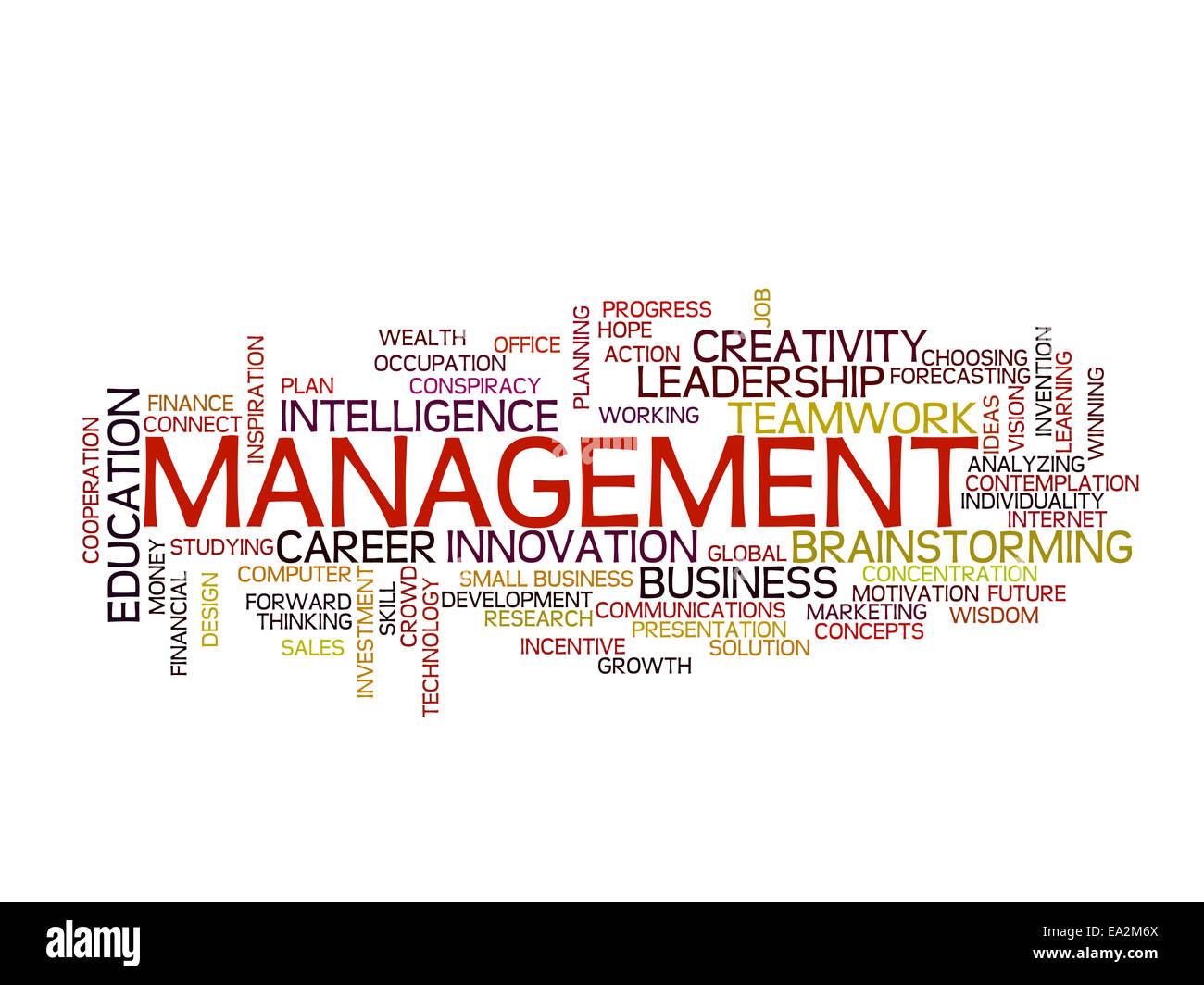 La strategia di gestione di parola il concetto di cloud Immagini Stock