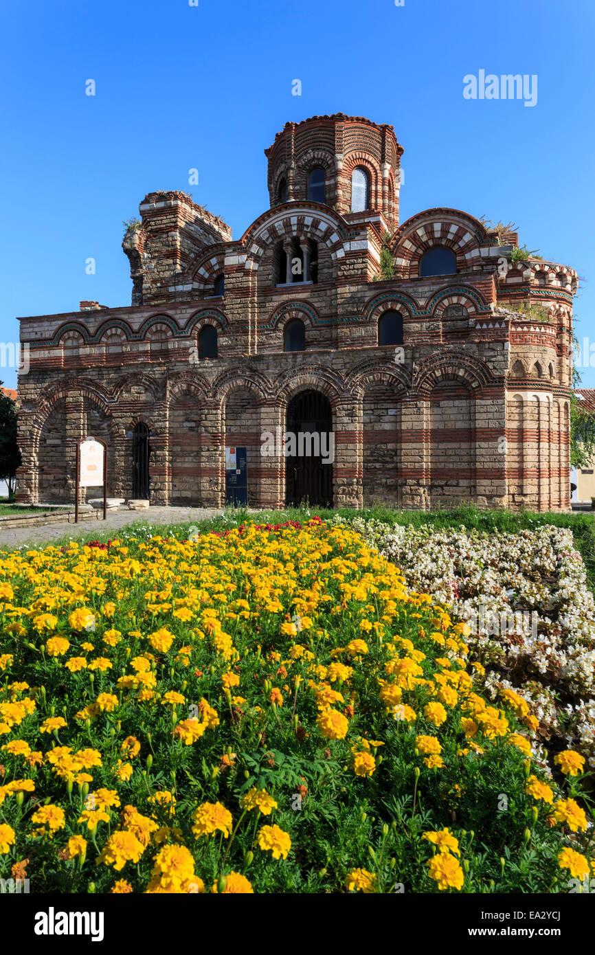 Fiore di frontiera, Chiesa di Cristo Pantocrator Nesebar (Nessebar), il Sito Patrimonio Mondiale dell'UNESCO, il litorale del Mar Nero, Bulgaria, Europa Foto Stock